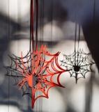 spider 010