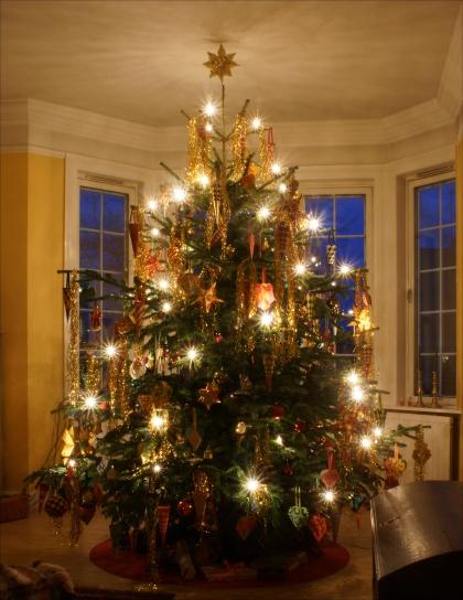 Christmas 2013 2