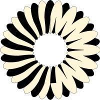 circle 10
