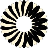 circle 7